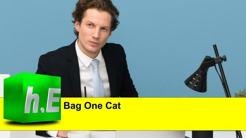 Bag One Cat