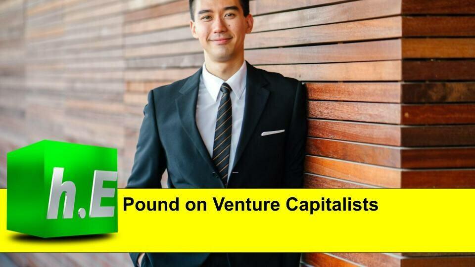 Pound on venture capitalists