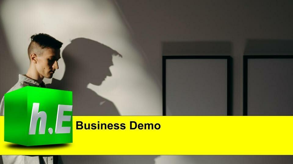 Business Demo