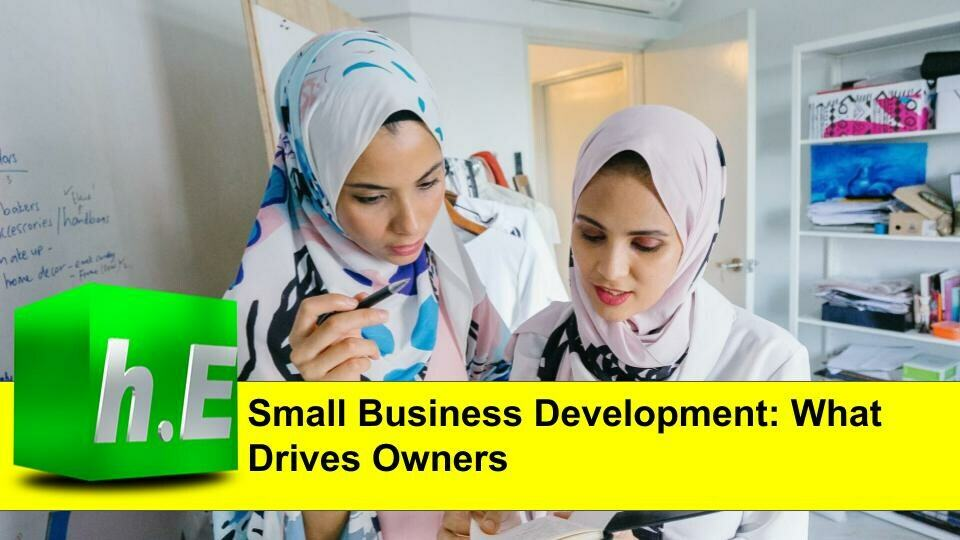Small business development: what drives owners