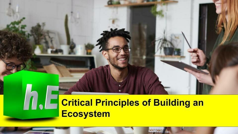 Critical Principles of building an ecosystem